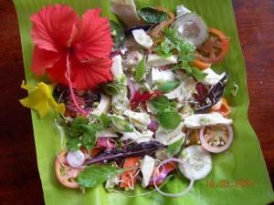 Whole Raw Food Veggie Paradise