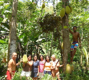 jackfruit-team1-sm
