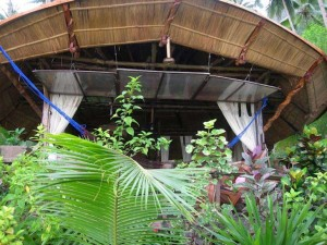 Malapacao Island Cottage Detox Cleansing